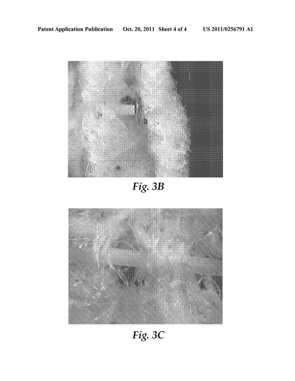 ELASTIC NONWOVEN FIBROUS WEBS AND METHODS OF MAKING AND USING - diagram, schematic, and image 05