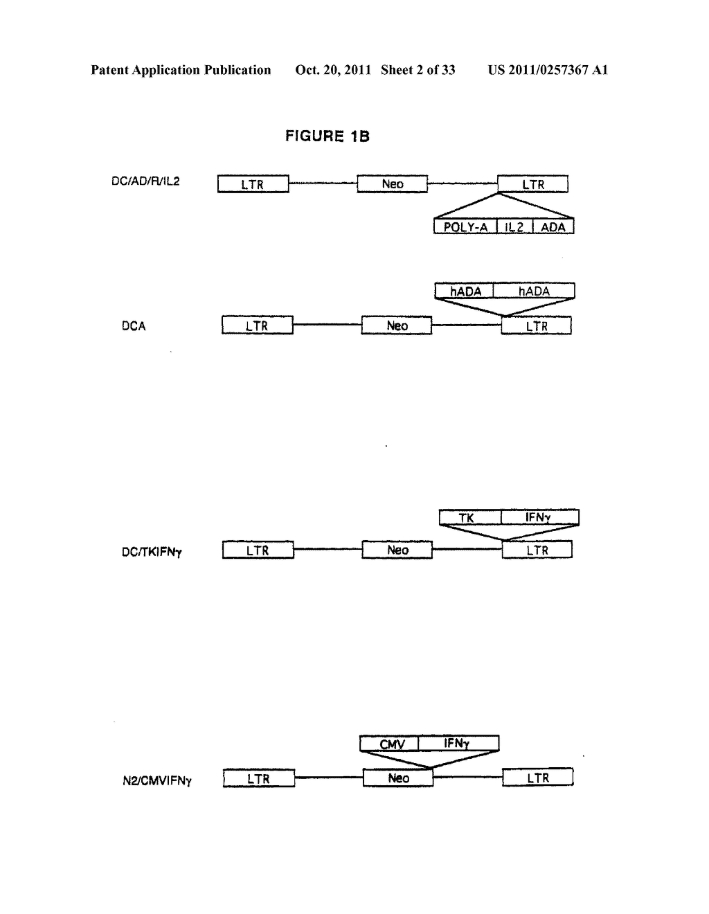 ALLOGENEIC VACCINE AND METHODS TO SYNTHESIZE SAME - diagram, schematic, and image 03