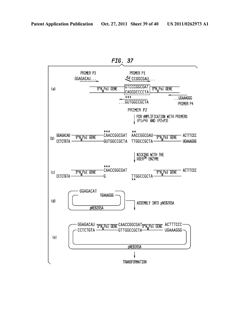 Methods and compositions for dna manipulation diagram schematic methods and compositions for dna manipulation diagram schematic and image 40 ccuart Image collections