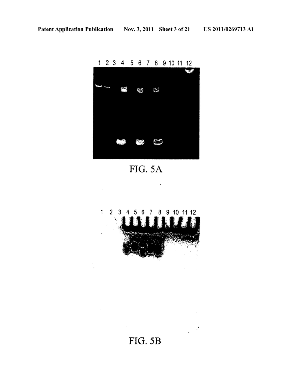 BRYOSTATIN ANALOGUES AND METHODS OF MAKING AND USING THEREOF - diagram, schematic, and image 04
