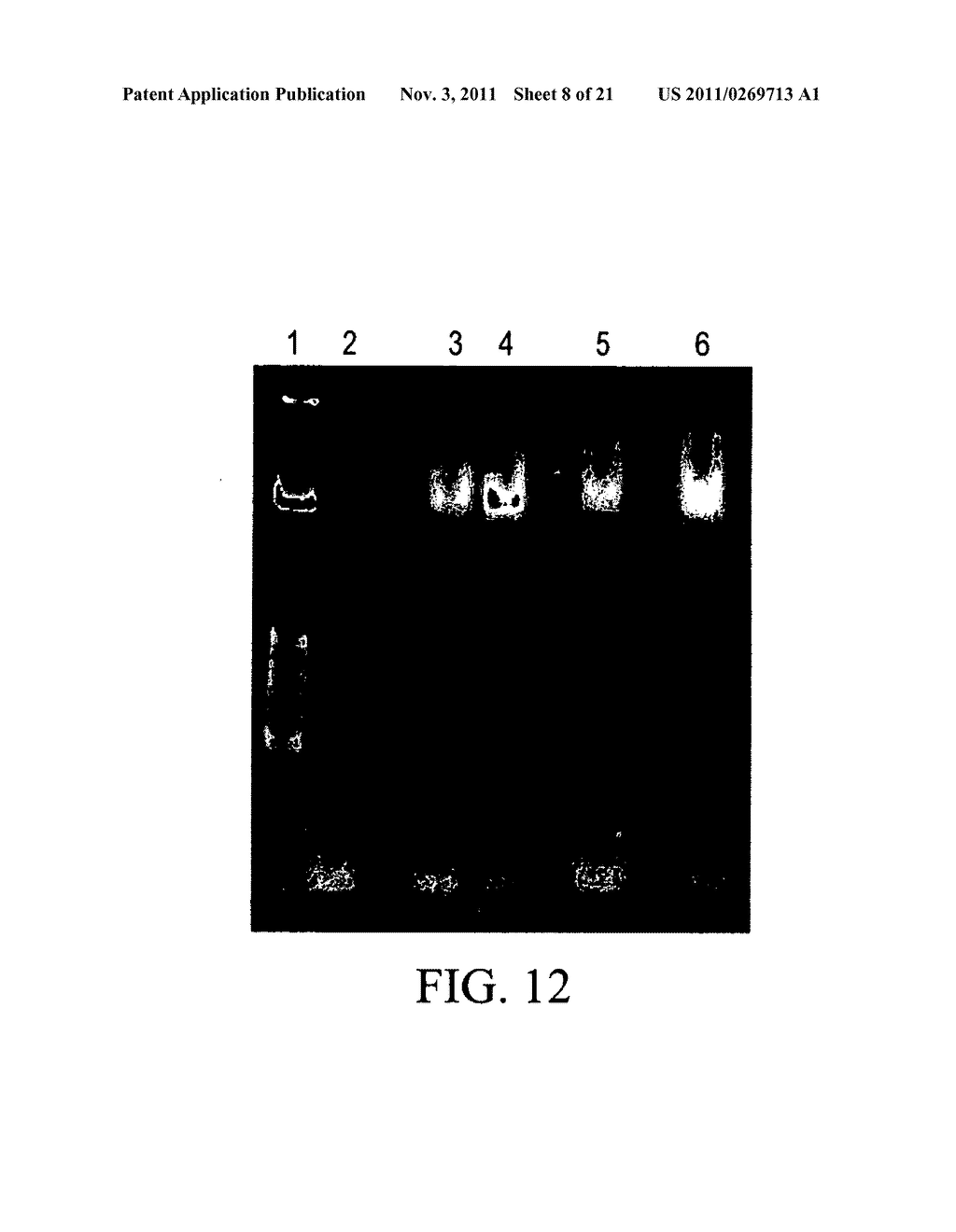 BRYOSTATIN ANALOGUES AND METHODS OF MAKING AND USING THEREOF - diagram, schematic, and image 09