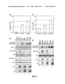 Attentuated Herpesvirus Encoding a Mek Pathway Polypeptide diagram and image