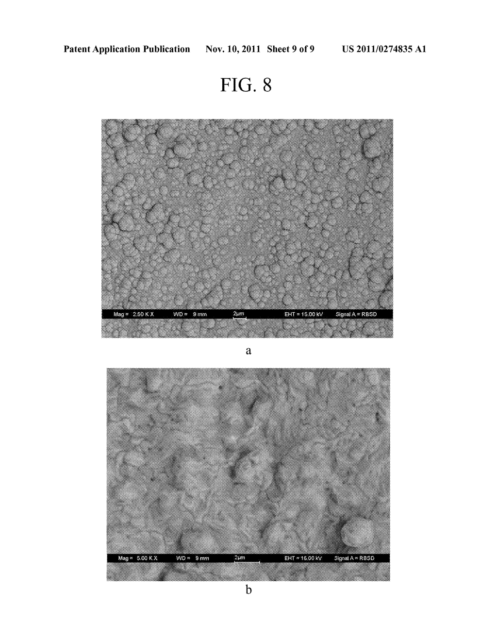 METHOD FOR MEMBRANE DEPOSITION - diagram, schematic, and image 10