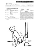 LOCKING PET LEAD SYSTEM COMPRISING A LEASH AND COLLAR TO PREVENT THE THEFT     OF PETS diagram and image