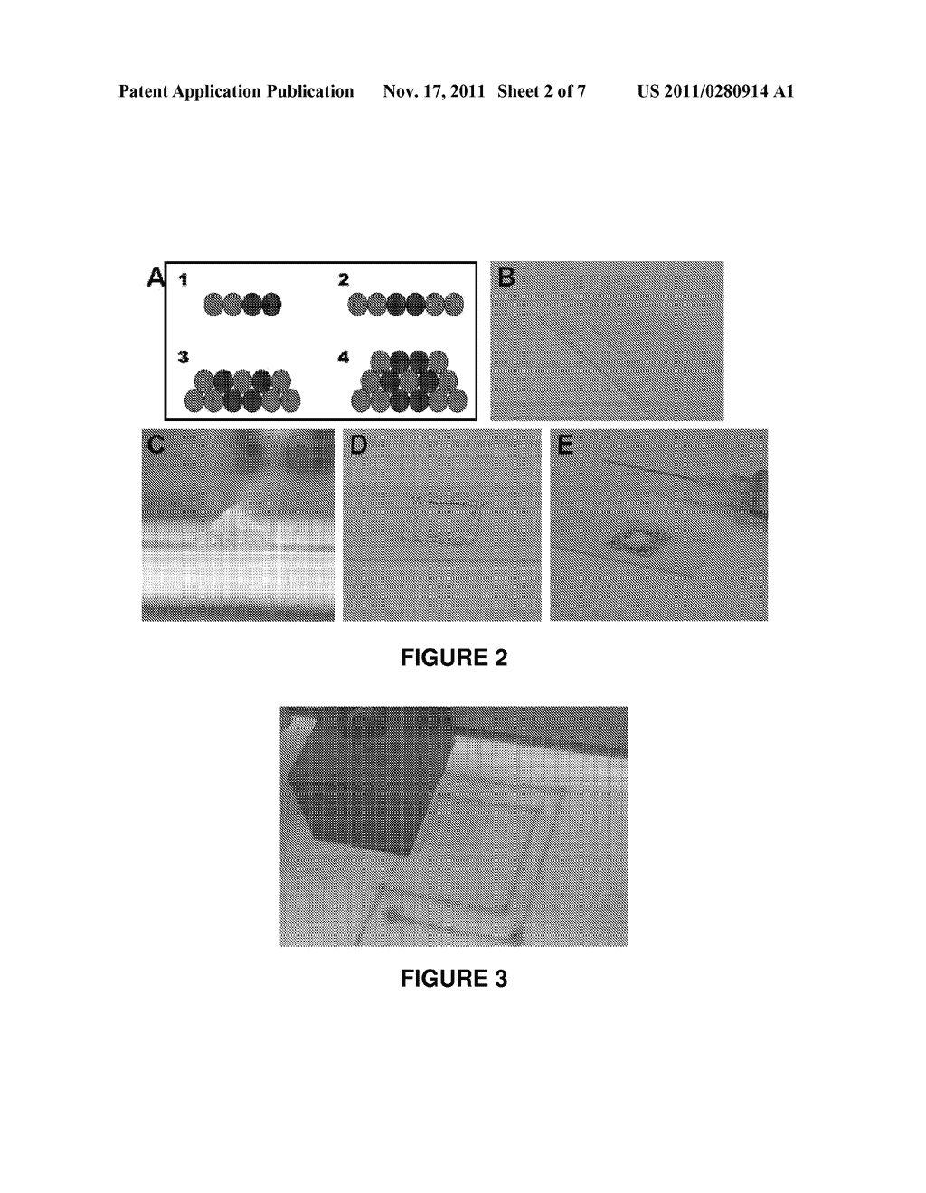 HYDROGELS CROSSLINKED WITH GOLD NANOPARTICLES AND METHODS OF MAKING AND     USING THEREOF - diagram, schematic, and image 03