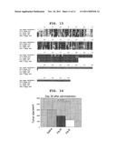 NOVEL CANCER TARGETING THERAPY USING COMPLEX OF SUBTANCE CAPABLE OF     BINDING SPECIFICALLY TO CONSTITUENT FACTOR OF CANCER STROMA AND     ANTI-TUMOR COMPOUND diagram and image