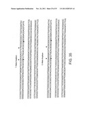 Method For Genetic Analysis Of DNA To Detect Sequence Variances diagram and image
