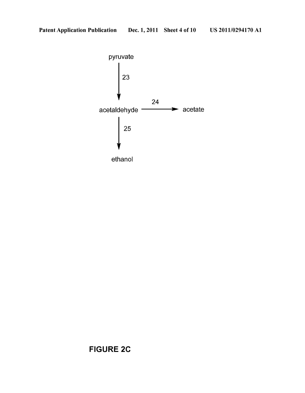 Pentose Fermentation By a Recombinant Microorganism - diagram, schematic, and image 05