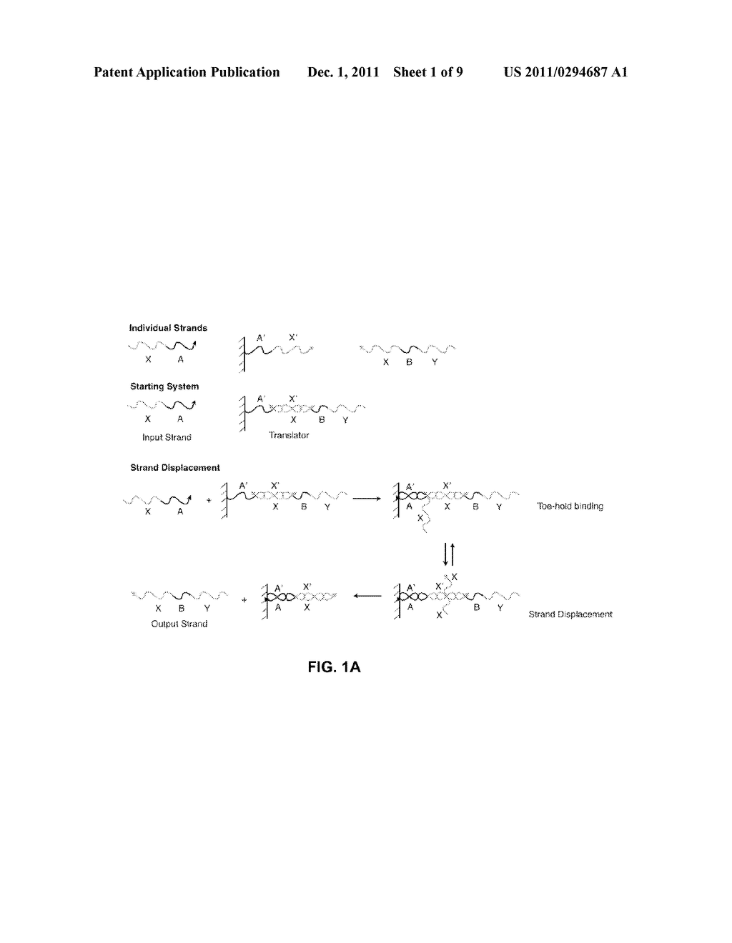 SYSTEM AND METHOD FOR PROPAGATING INFORMATION USING MODIFIED NUCLEIC ACIDS - diagram, schematic, and image 02