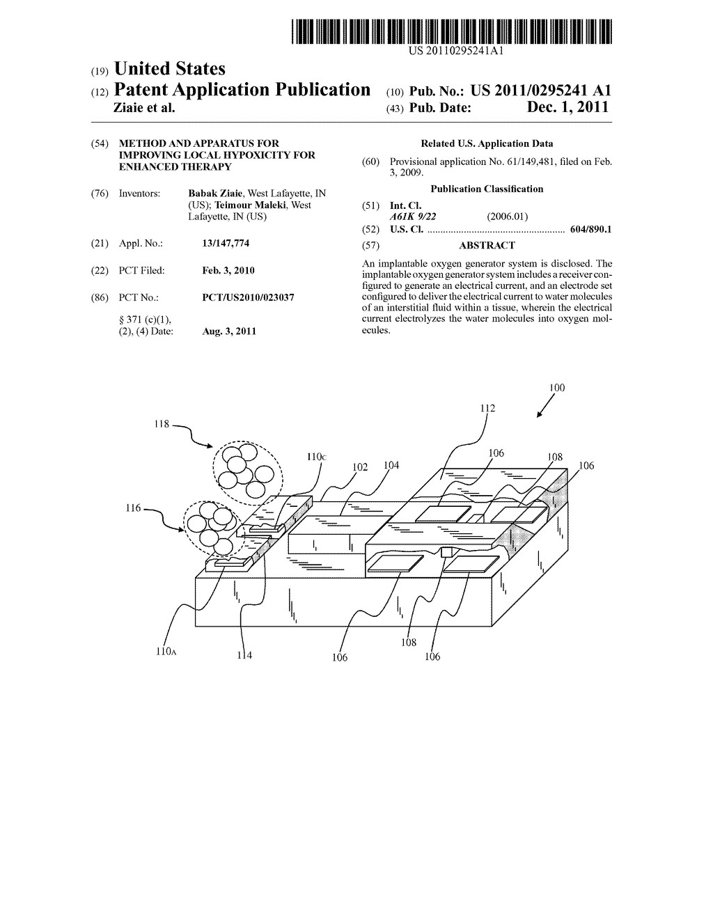 METHOD AND APPARATUS FOR IMPROVING LOCAL HYPOXICITY FOR ENHANCED THERAPY - diagram, schematic, and image 01