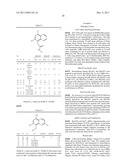 QUINOLINE COMPOUNDS AS INHIBITORS OF ANGIOGENESIS, HUMAN METHIONINE     AMINOPEPTIDASE, AND SIRT1, AND METHODS OF TREATING DISORDERS diagram and image
