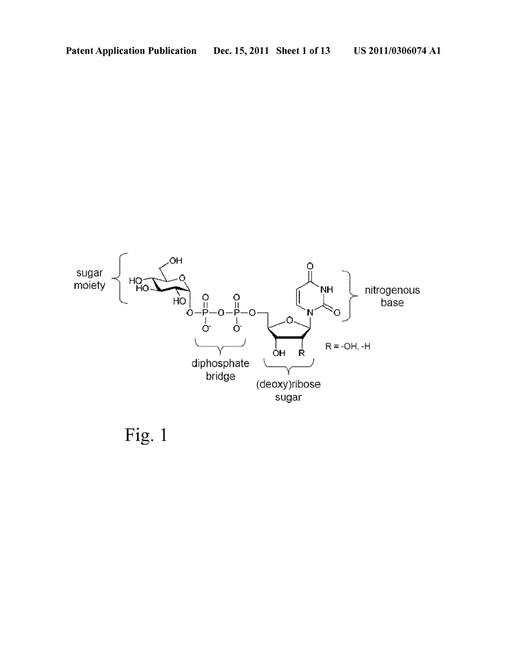 GLYCOSYLTRANSFERASE REVERSIBILITY FOR SUGAR NUCLEOTIDE SYNTHESIS - diagram, schematic, and image 02