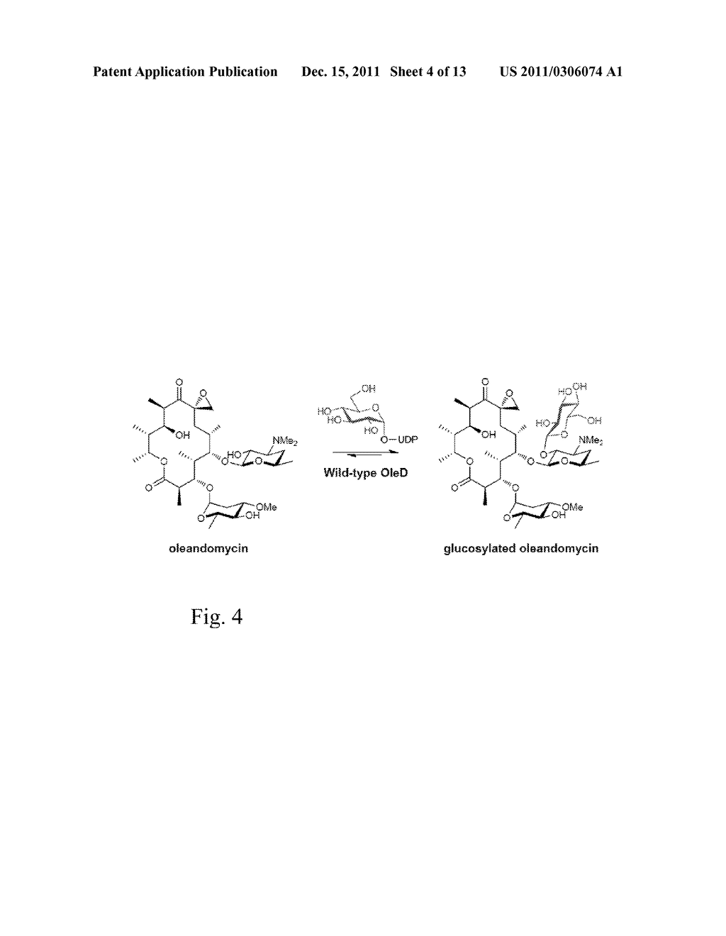 GLYCOSYLTRANSFERASE REVERSIBILITY FOR SUGAR NUCLEOTIDE SYNTHESIS - diagram, schematic, and image 05