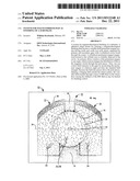 SYSTEM FOR MAGNETORHEOLOGICAL FINISHING OF A SUBSTRATE diagram and image