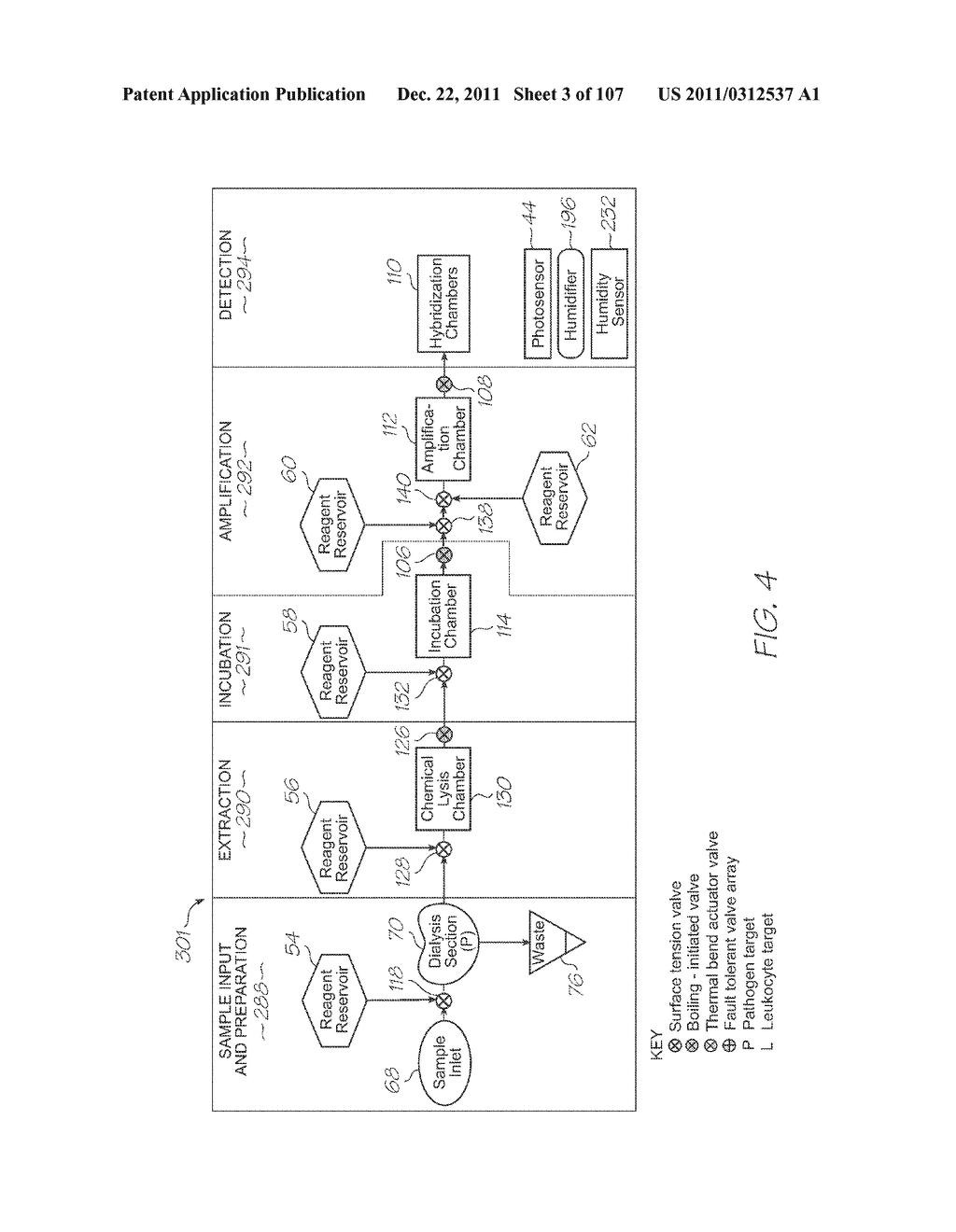 LOC DEVICE FOR AMPLIFYING AND DETECTING TARGET NUCLEIC ACID SEQUENCES     USING ELECTROCHEMILUMINESCENT RESONANT ENERGY TRANSFER, LINEAR PROBES     WITH COVALENTLY ATTACHED PRIMERS - diagram, schematic, and image 04