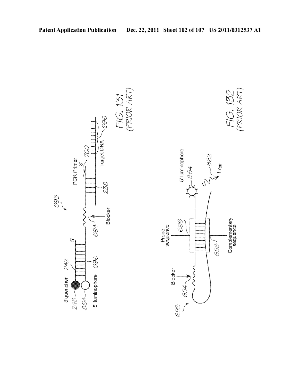 LOC DEVICE FOR AMPLIFYING AND DETECTING TARGET NUCLEIC ACID SEQUENCES     USING ELECTROCHEMILUMINESCENT RESONANT ENERGY TRANSFER, LINEAR PROBES     WITH COVALENTLY ATTACHED PRIMERS - diagram, schematic, and image 103