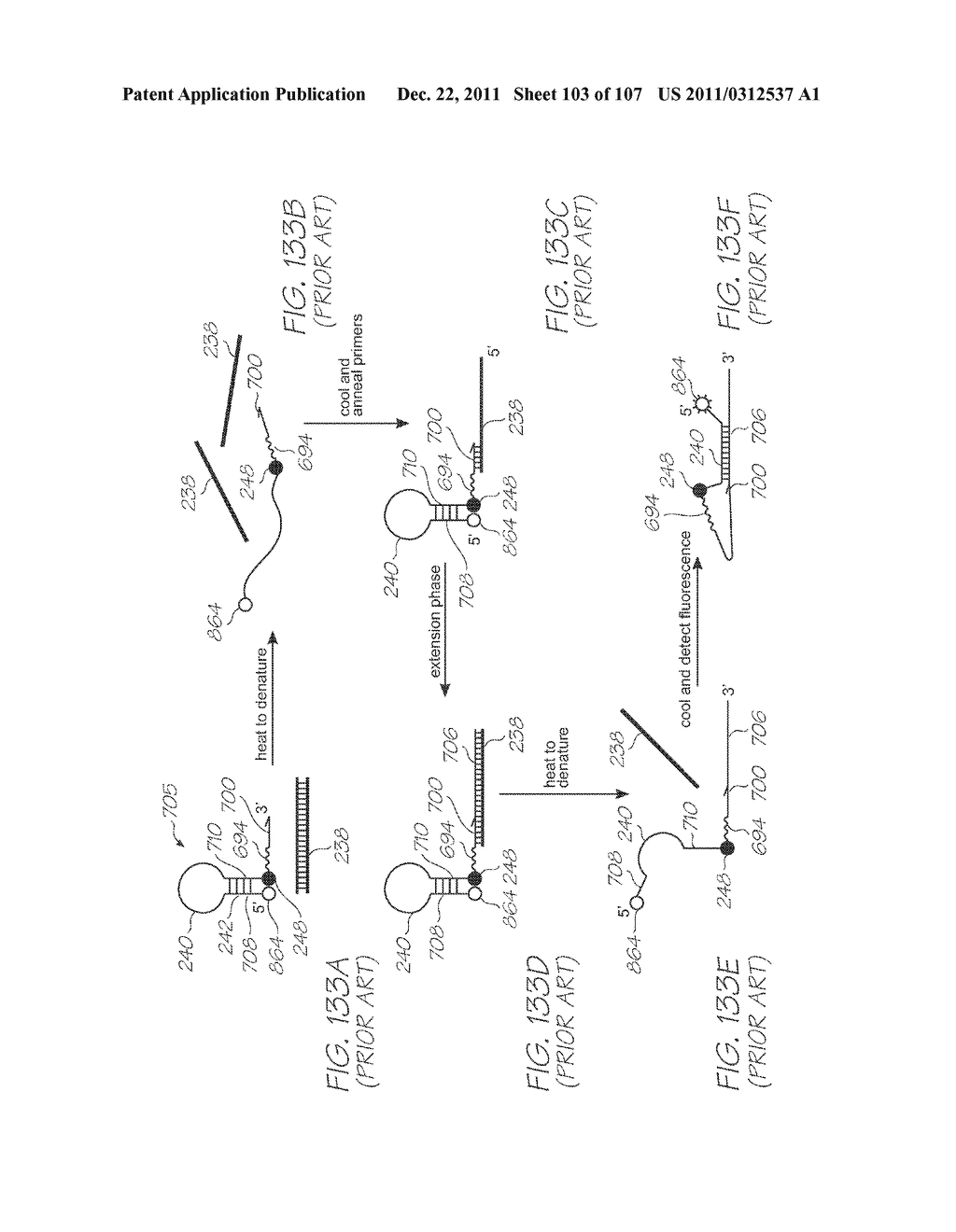 LOC DEVICE FOR AMPLIFYING AND DETECTING TARGET NUCLEIC ACID SEQUENCES     USING ELECTROCHEMILUMINESCENT RESONANT ENERGY TRANSFER, LINEAR PROBES     WITH COVALENTLY ATTACHED PRIMERS - diagram, schematic, and image 104