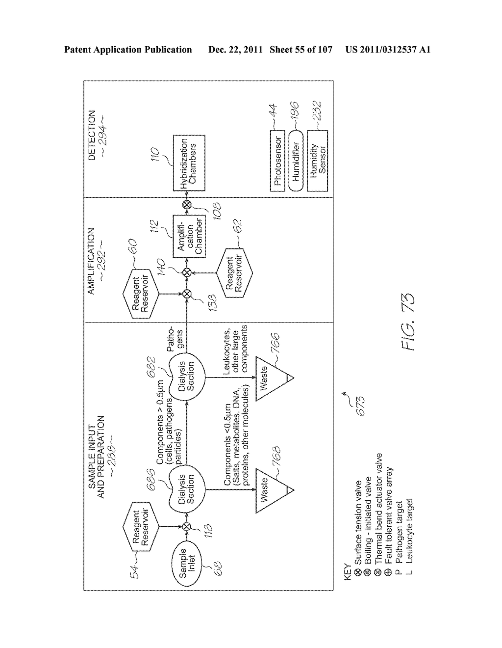 LOC DEVICE FOR AMPLIFYING AND DETECTING TARGET NUCLEIC ACID SEQUENCES     USING ELECTROCHEMILUMINESCENT RESONANT ENERGY TRANSFER, LINEAR PROBES     WITH COVALENTLY ATTACHED PRIMERS - diagram, schematic, and image 56