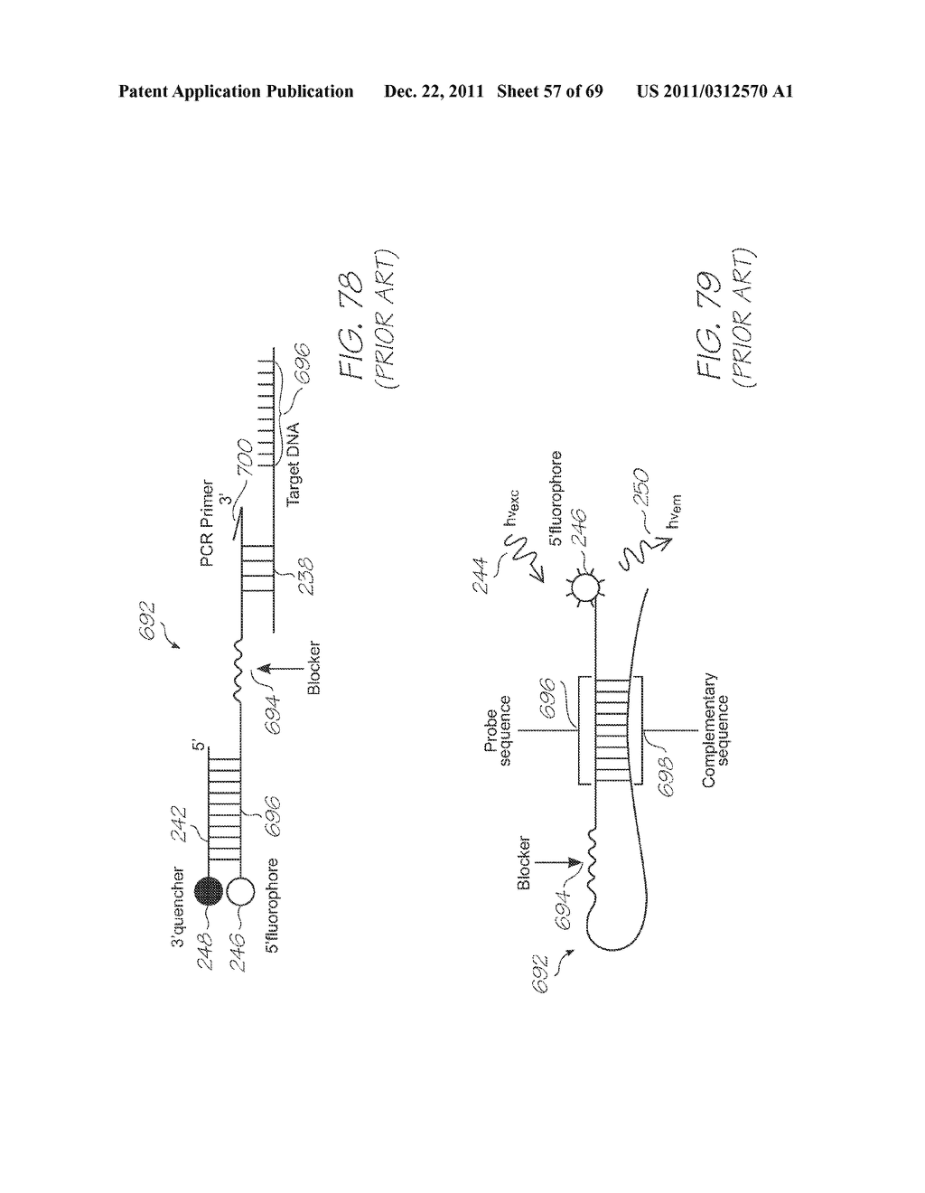 MICROFLUIDIC DEVICE FOR DETECTING TARGET NUCLEIC ACID SEQUENCES WITH     PROBES HAVING LONG FLUORESCENCE LIFETIME FLUOROPHORES - diagram, schematic, and image 58