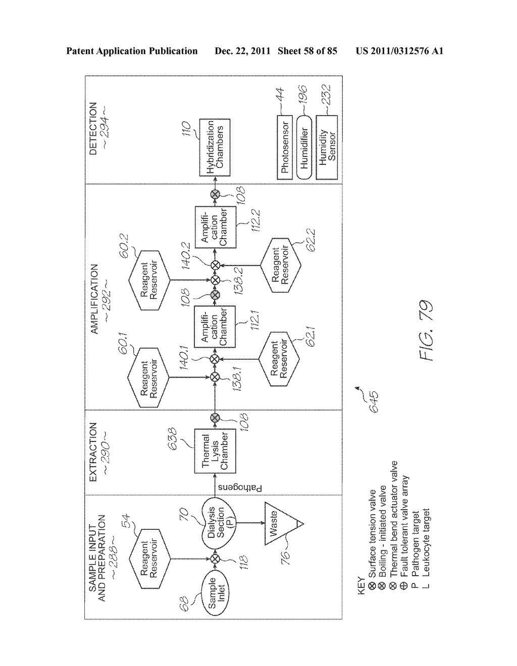 GENETIC ANALYSIS LOC DEVICE FOR MULTI-STAGE AMPLIFICATION OF NUCLEIC ACID     SEQUENCES - diagram, schematic, and image 59