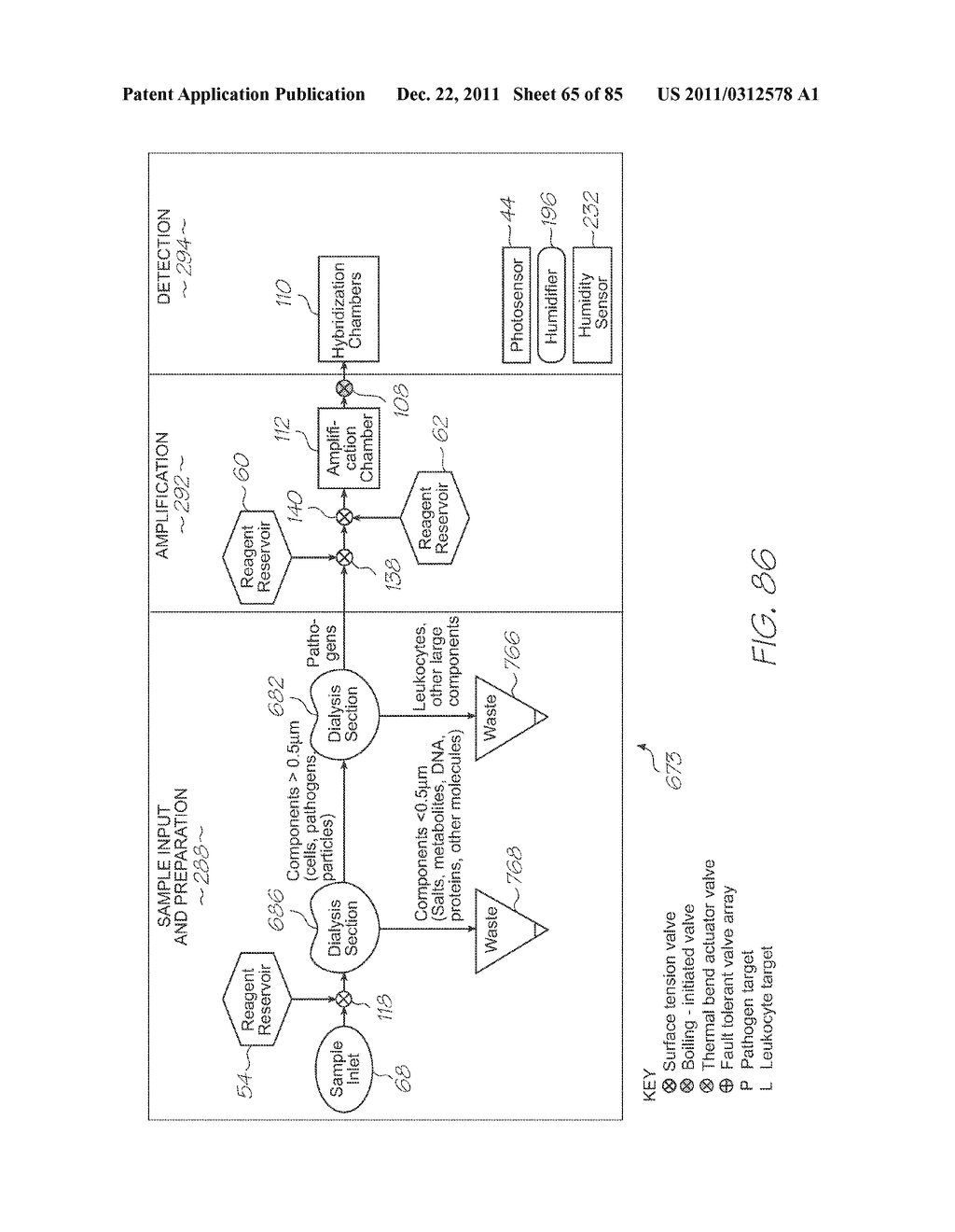 GENETIC ANALYSIS LOC FOR NON-SPECIFIC NUCLEIC ACID AMPLIFICATION PRIOR TO     SPECIFIC AMPLIFICATION OF PARTICULAR SEQUENCES - diagram, schematic, and image 66