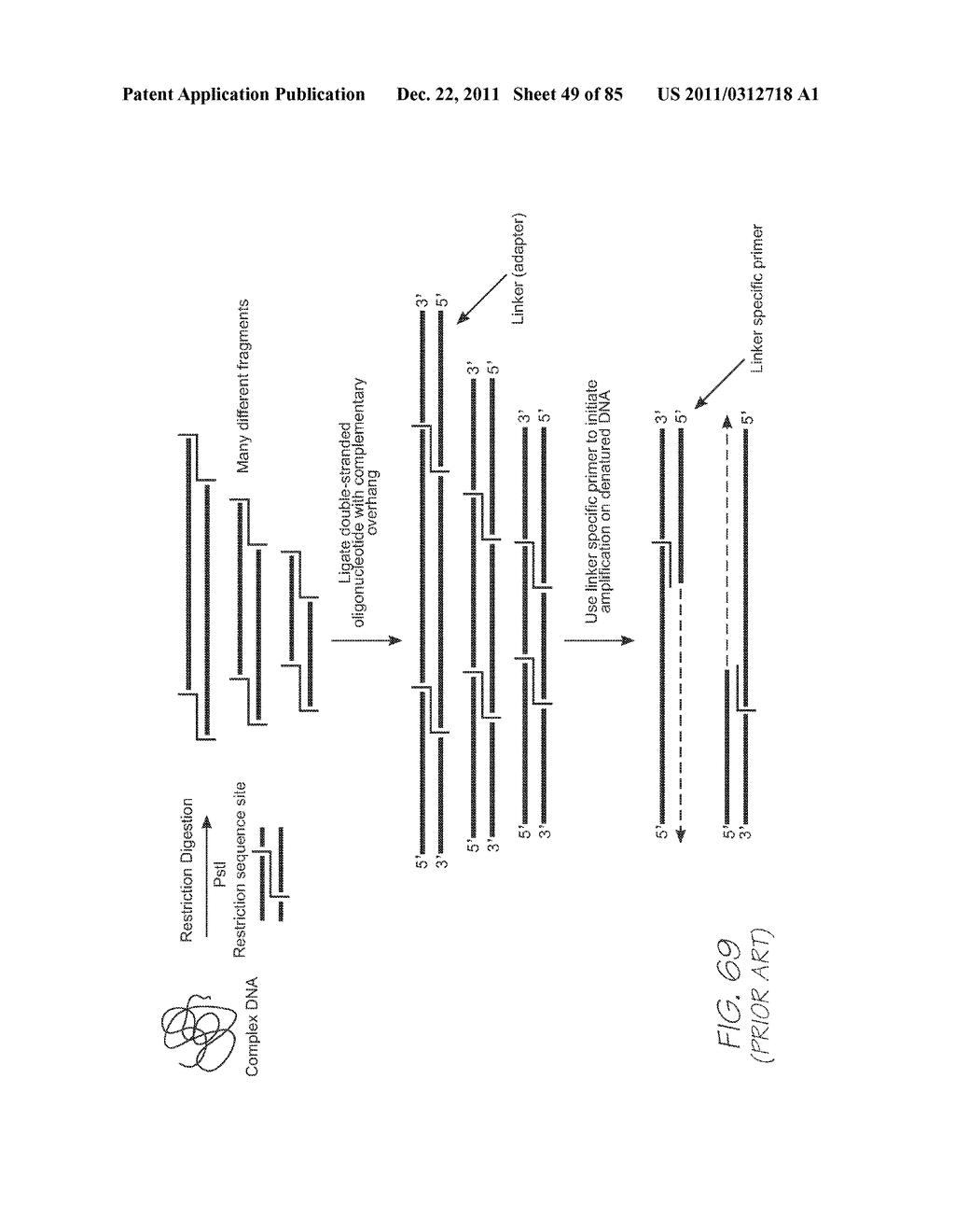 GENETIC ANALYSIS LOC FOR NUCLEIC ACID AMPLIFICATION USING RECOMBINASE     POLYMERASE AMPLIFICATION - diagram, schematic, and image 50