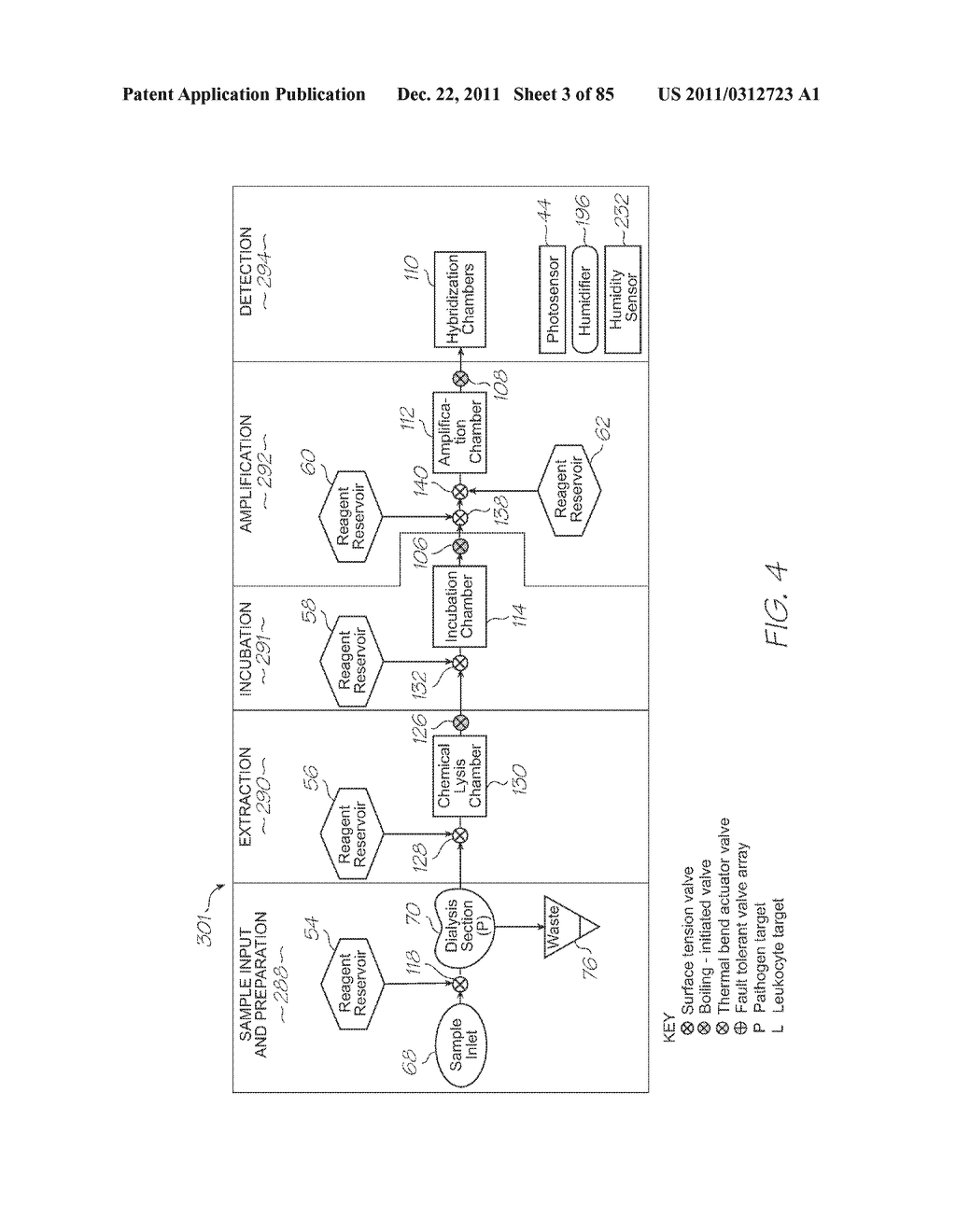 GENETIC ANALYSIS LOC FOR NUCLEIC ACID AMPLIFICATION USING NUCLEIC ACID     SEQUENCE BASED AMPLIFICATION - diagram, schematic, and image 04