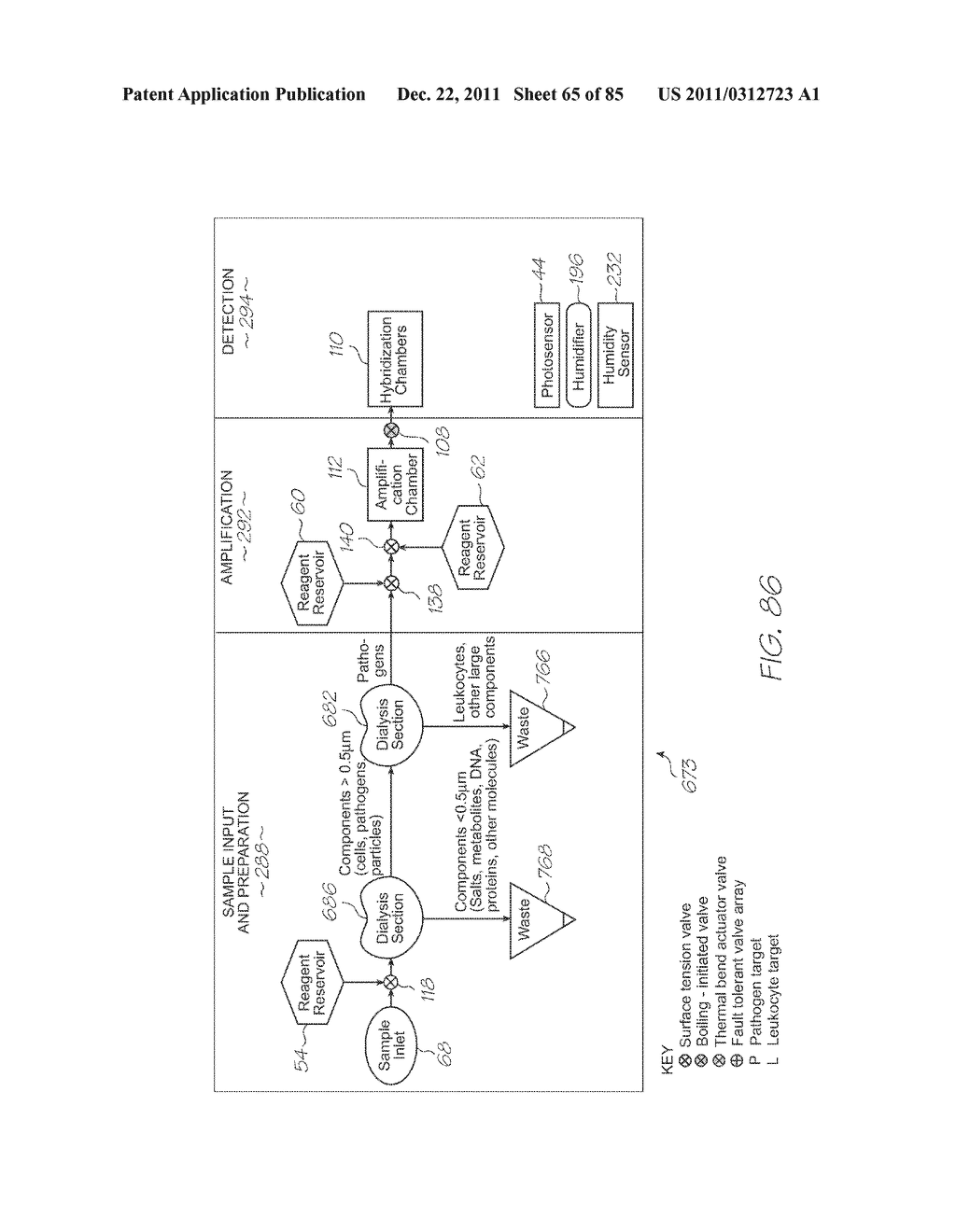 GENETIC ANALYSIS LOC FOR NUCLEIC ACID AMPLIFICATION USING NUCLEIC ACID     SEQUENCE BASED AMPLIFICATION - diagram, schematic, and image 66