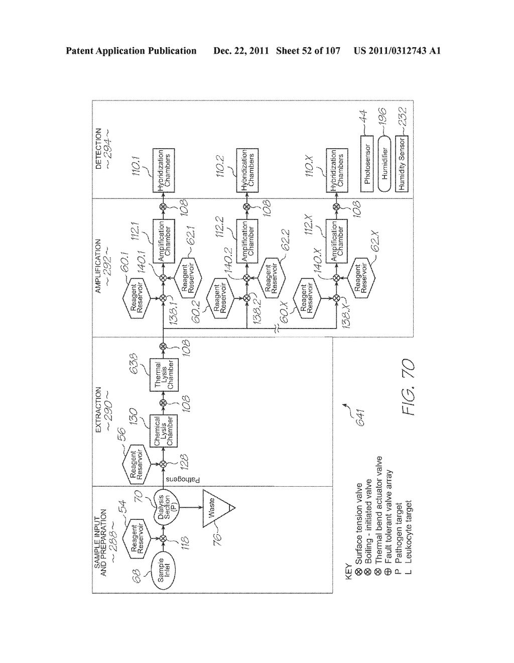 LOC DEVICE FOR DETECTION OF TARGET NUCLEIC ACID SEQUENCES USING ELECTRODES     CONFIGURED FOR ELECTROCHEMILUMINESCENCE OF LUMINOPHORES WITHOUT A     COREACTANT - diagram, schematic, and image 53