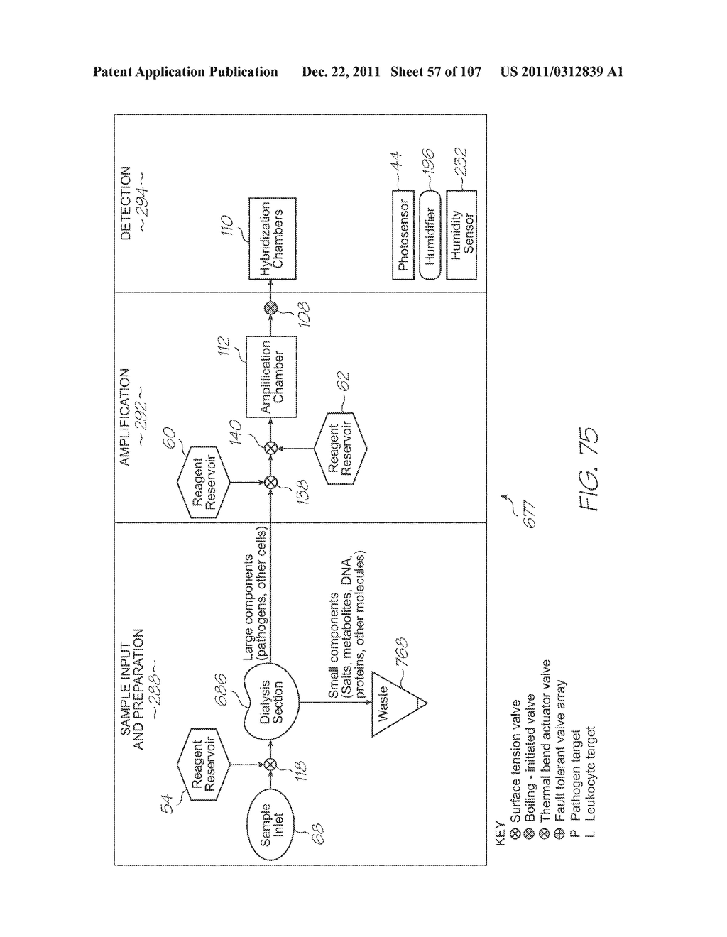 GENETIC ANALYSIS LOC DEVICE FOR ELECTROCHEMILUMINESCENT DETECTION OF     TARGET SEQUENCES WITH WORKING ELECTRODE IN CONTACT WITH PHOTOSENSOR - diagram, schematic, and image 58