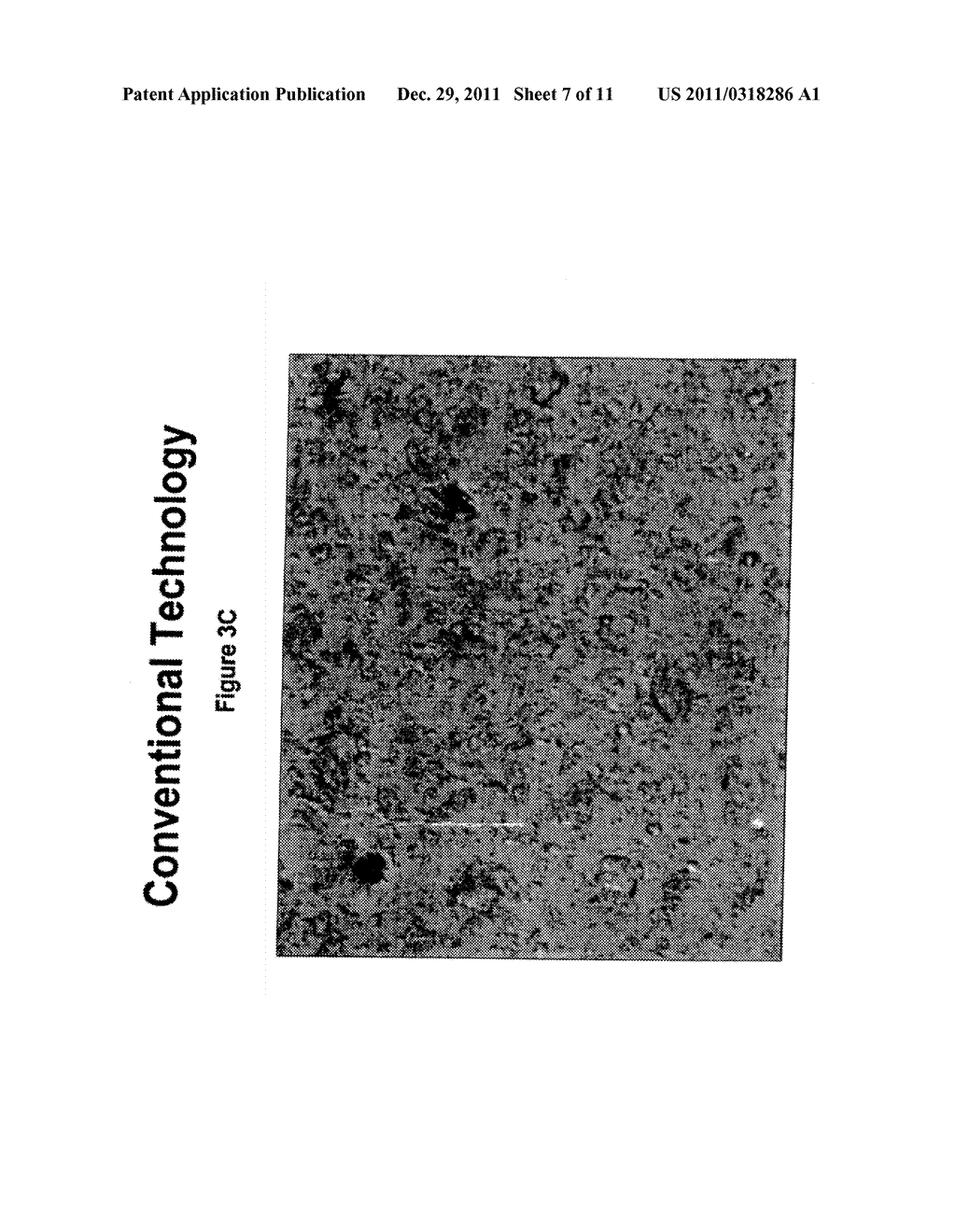 SPF ENHANCED EXTENDED COLOR BULK POWDERS AND METHODS OF MAKING THEREOF - diagram, schematic, and image 08