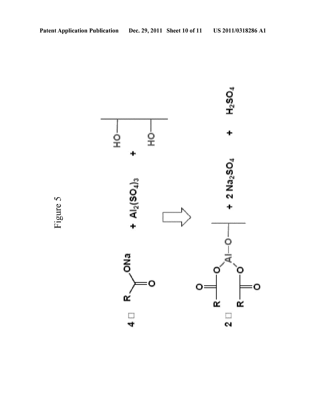 SPF ENHANCED EXTENDED COLOR BULK POWDERS AND METHODS OF MAKING THEREOF - diagram, schematic, and image 11