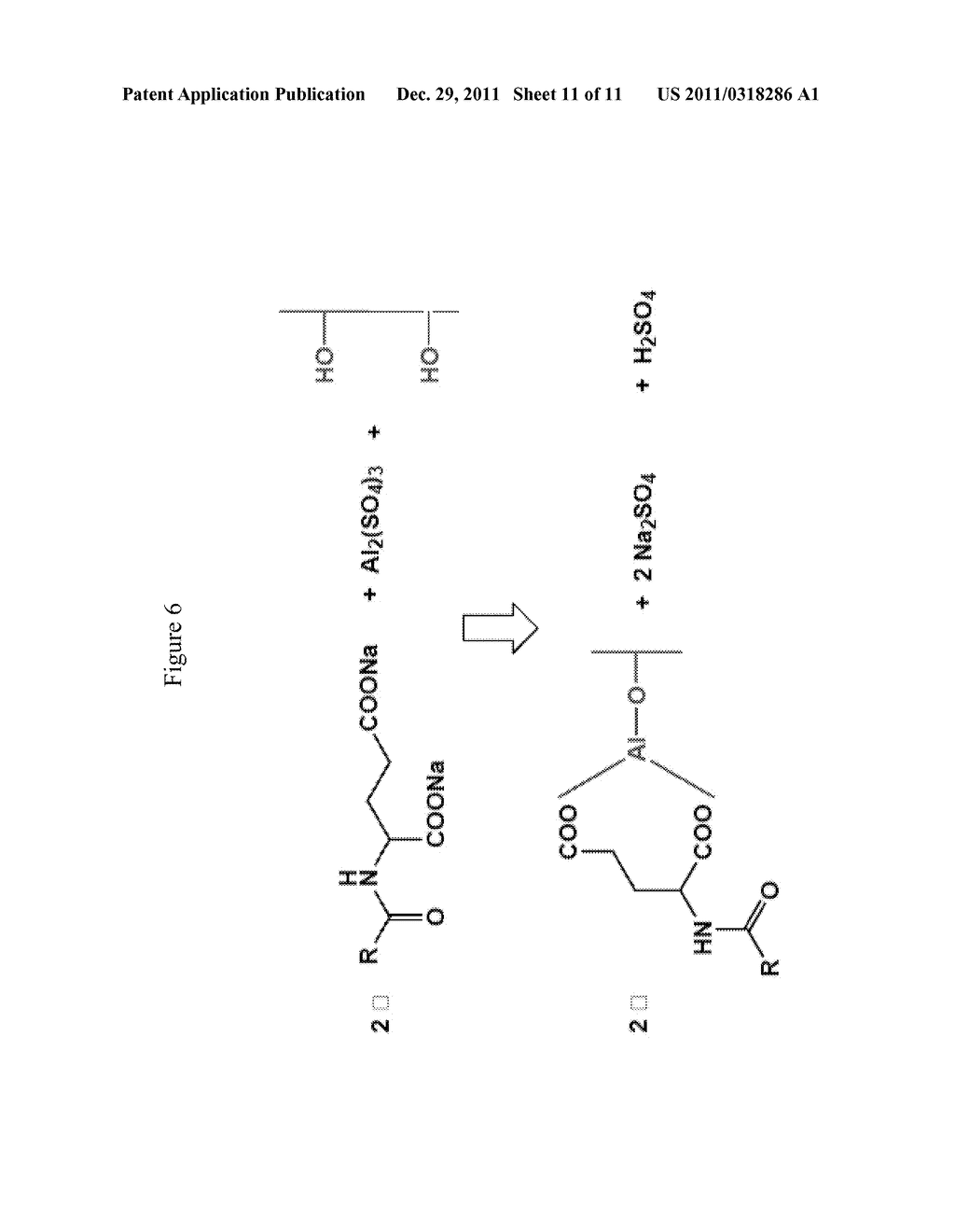 SPF ENHANCED EXTENDED COLOR BULK POWDERS AND METHODS OF MAKING THEREOF - diagram, schematic, and image 12