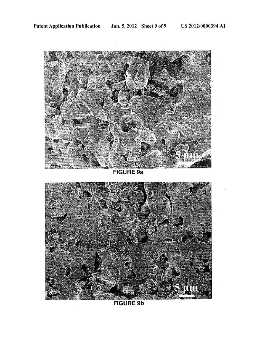 Tricalcium Phosphate Coarse Particle Compositions and Methods for Making     the Same - diagram, schematic, and image 10
