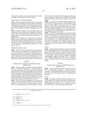 MCM6 AND MCM7 MONOCLONAL ANTIBODIES AND METHODS FOR THEIR USE IN THE     DETECTION OF CERVICAL DISEASE diagram and image