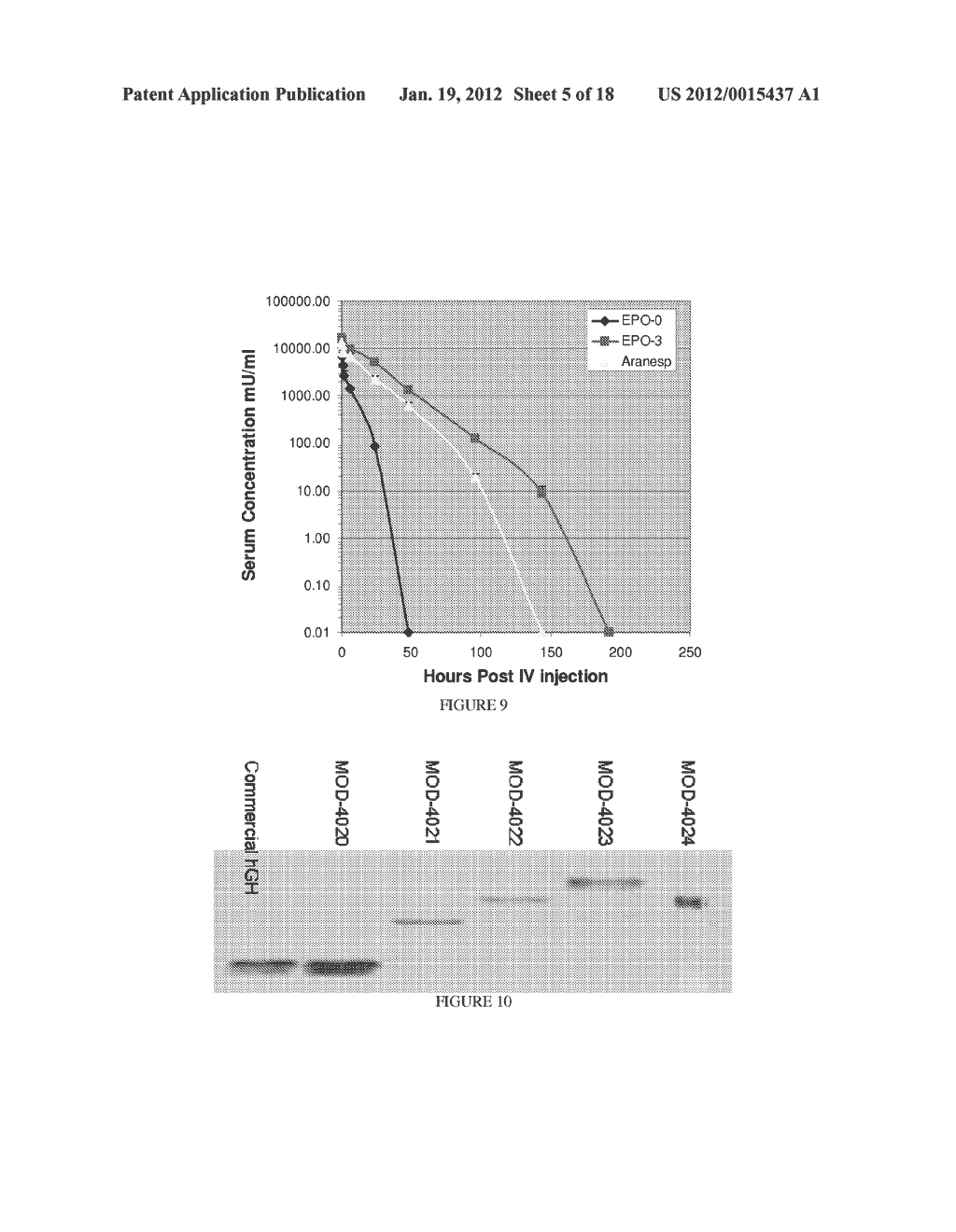 LONG-ACTING POLYPEPTIDES AND METHODS OF PRODUCING SAME - diagram, schematic, and image 06