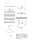 POLYMER CONJUGATES diagram and image
