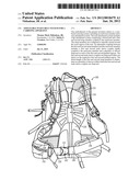 Adjustable Waist Belt System for a Carrying Apparatus diagram and image
