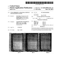 ANTI-CORROSION LAYER FOR ALUMINUM AND MAGNESIUM ALLOYS diagram and image