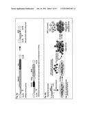 IDENTIFICATION OF ANTIGEN OR LIGAND-SPECIFIC BINDING PROTEINS diagram and image