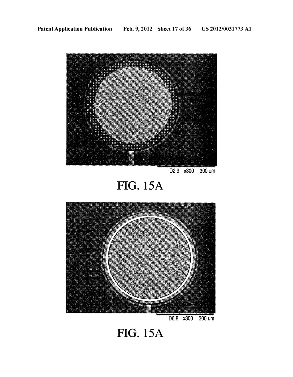 IMMUNOASSAY METHOD AND DEVICE WITH MAGNETICALLY SUSCEPTIBLE BEAD CAPTURE - diagram, schematic, and image 18
