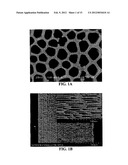 MULTIPLE WALLED NESTED COAXIAL NANOSTRUCTURES diagram and image