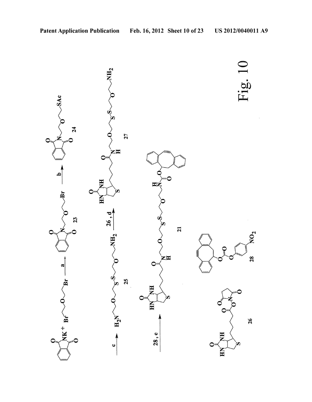 ALKYNES AND METHODS OF REACTING ALKYNES WITH 1,3-DIPOLE-FUNCTIONAL     COMPOUNDS - diagram, schematic, and image 11