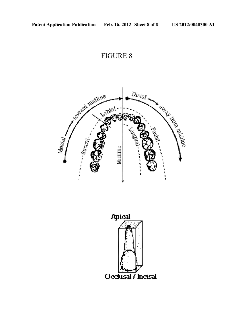 VIBRATING DENTAL PLATE AND ACCESSORIES - diagram, schematic, and image 09