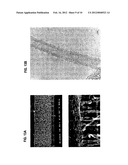 BUNDLE OF LONG THIN CARBON STRUCTURES, MANUFACTURING METHOD THEREFOR, AND     ELECTRONIC DEVICE diagram and image