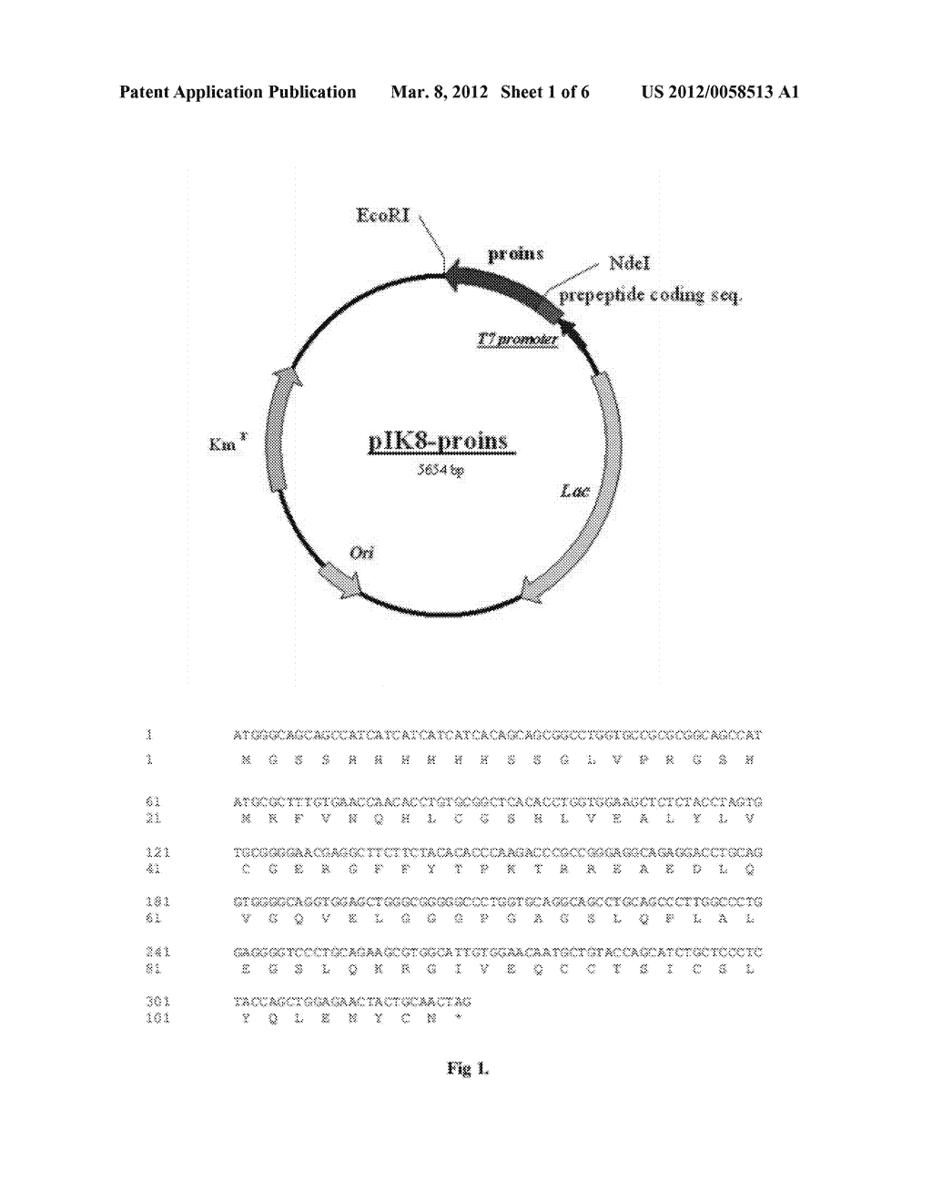 METHOD FOR PRODUCING HUMAN RECOMBINANT INSULIN - diagram, schematic, and image 02