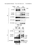 SIGNAL TRANSDUCTION PROTEIN TAB2 diagram and image