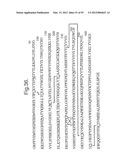 Cell Culture Compositions Capable of Producing a VEGF-Binding Fusion     Polypeptide diagram and image