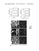 METHOD FOR INHIBITING THE GROWTH OF MYCOBACTERIUM TUBERCULOSIS BY USING     CD13 RECEPTOR diagram and image