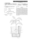 Water Supply Device for Planting Container diagram and image